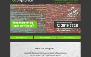 Algeservice, hjemmeside